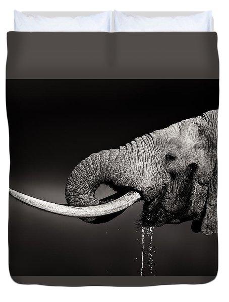 Elephant Bull Drinking Water - Duetone Duvet Cover