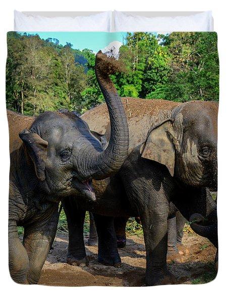Elephant Cool Down Duvet Cover