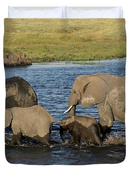Elephant Crossing Duvet Cover