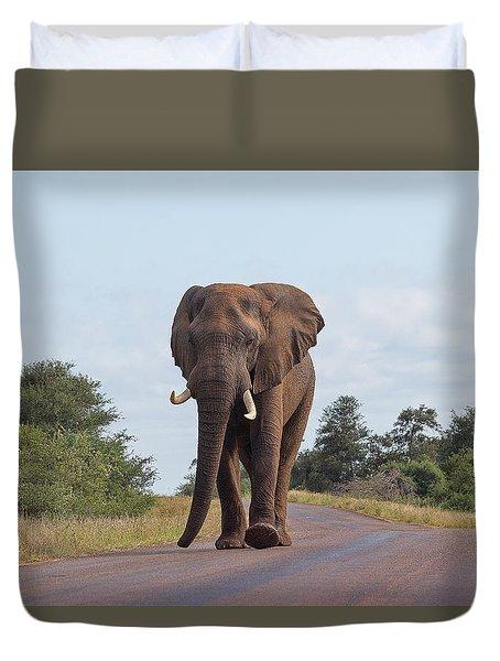 Elephant In Kruger Duvet Cover