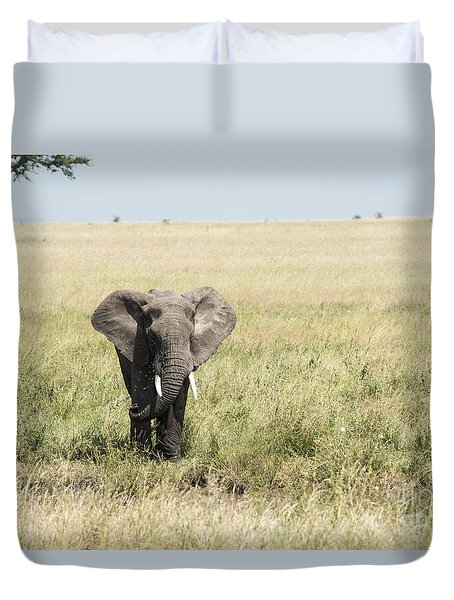 Duvet Cover featuring the photograph Elephant In The Serengeti by Pravine Chester