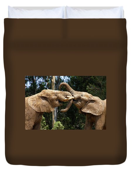 Elephant Play Duvet Cover