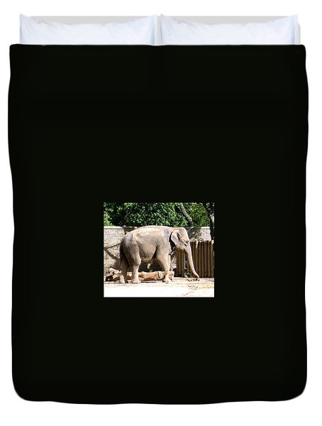 Duvet Cover featuring the photograph Elephant by Rose Santuci-Sofranko