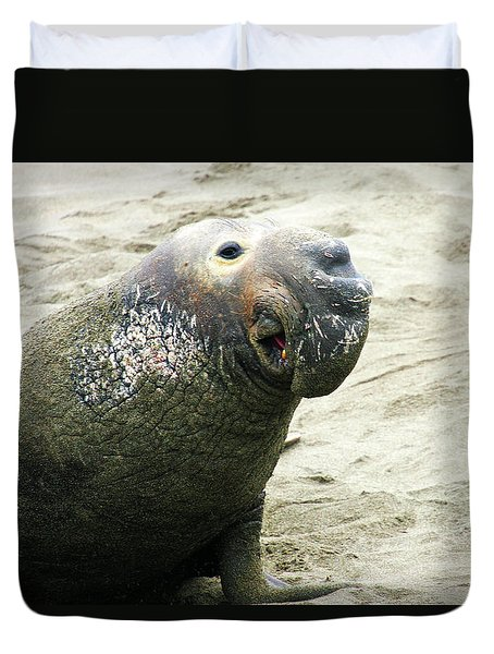 Duvet Cover featuring the photograph Elephant Seal by Anthony Jones