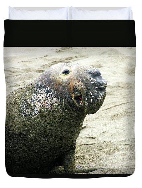 Elephant Seal Duvet Cover