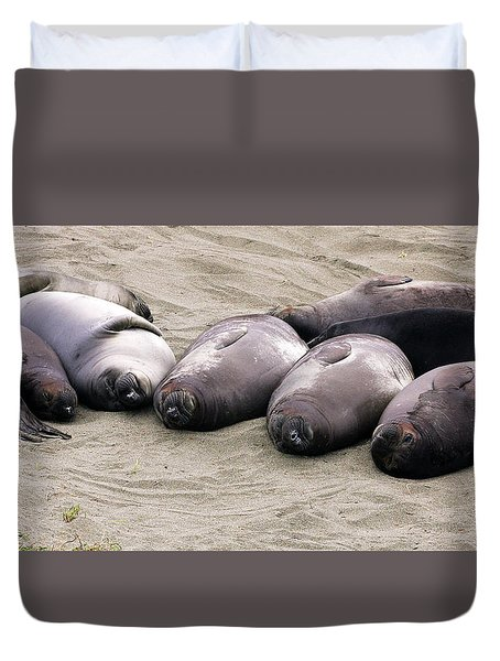 Elephant Seals Duvet Cover