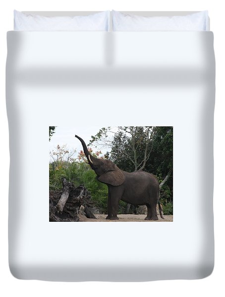 Duvet Cover featuring the photograph Elephant Time by Vadim Levin