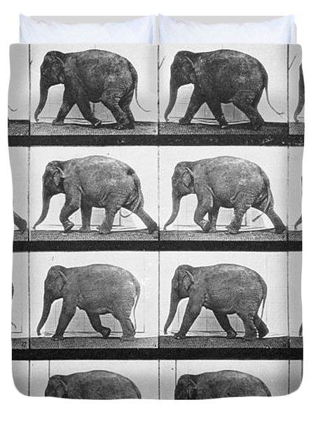 Elephant Walking Duvet Cover by Eadweard Muybridge