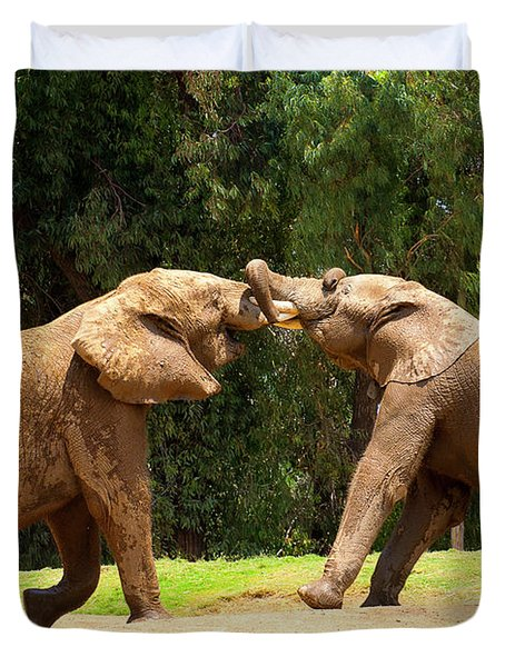 Elephants At Play 2 Duvet Cover