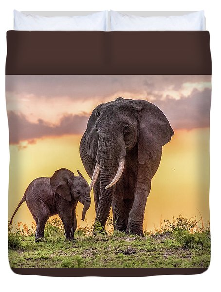 Elephants At Sunset Duvet Cover by Janis Knight