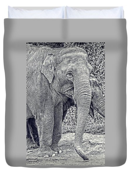 Elephants In Black And White  Duvet Cover