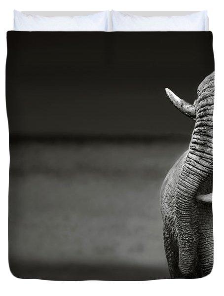 Elephants Interacting Duvet Cover