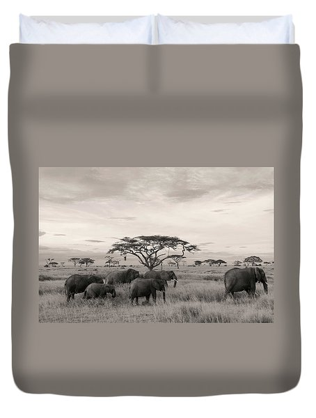 Duvet Cover featuring the photograph Elephants by Stefano Buonamici