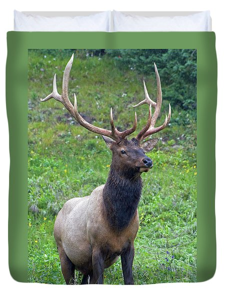 Duvet Cover featuring the photograph Elk 5 by Gary Lengyel