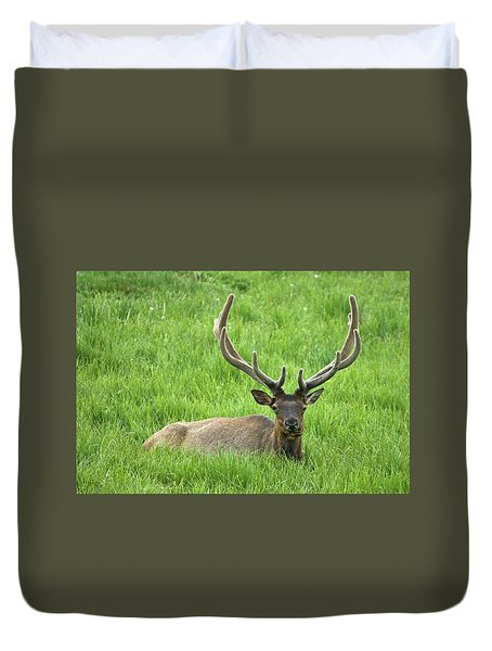 Duvet Cover featuring the photograph Elk 6 by Gary Lengyel