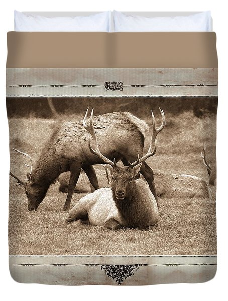 Duvet Cover featuring the photograph Elk by Athala Carole Bruckner