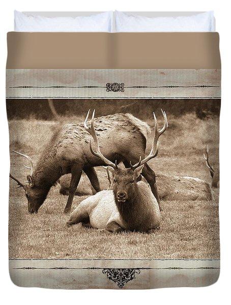 Elk Duvet Cover by Athala Carole Bruckner