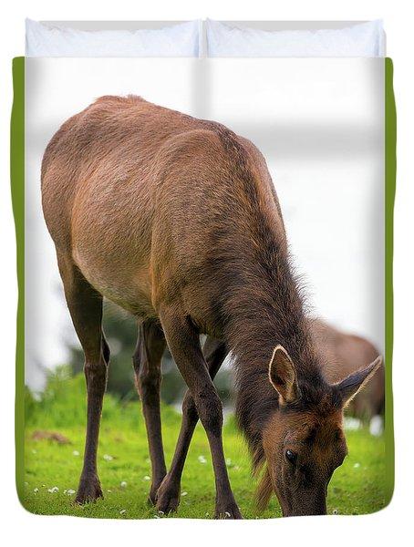 Elk Grazing On Green Pasture Closeup Duvet Cover