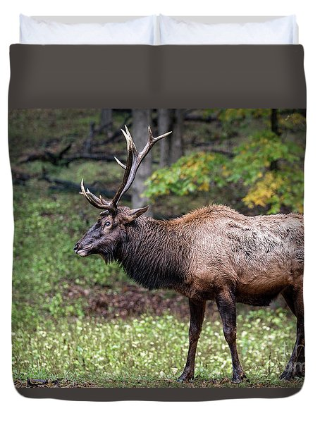 Duvet Cover featuring the photograph Elk Grin by Andrea Silies