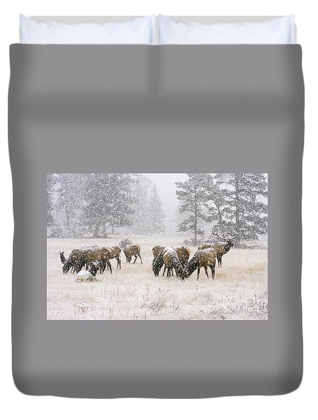 Elk In A Snow Storm - 1135 Duvet Cover