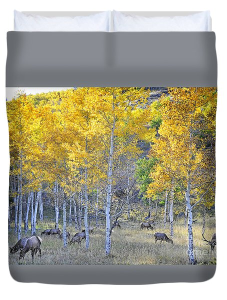 Elk In Rmnp Colorado Duvet Cover