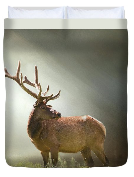 Duvet Cover featuring the photograph Elk In Suns Rays by David and Carol Kelly