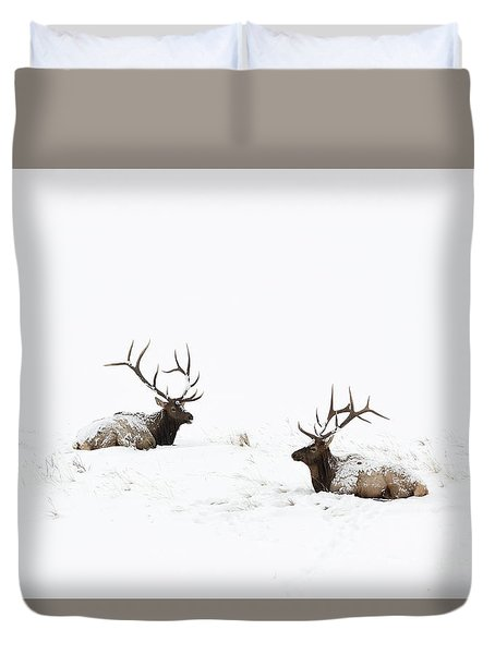 Elk Laying In A Snow Covered Meadow - 9069 Duvet Cover