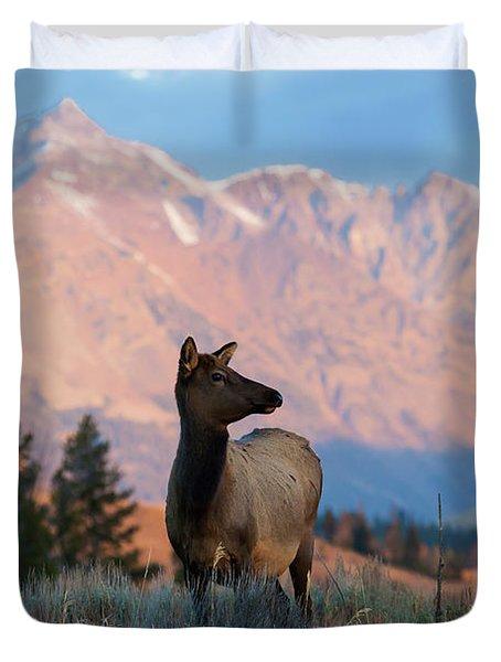 Elk Majesty Duvet Cover