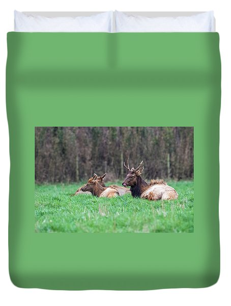 Duvet Cover featuring the photograph Elk Relaxing by Paul Freidlund
