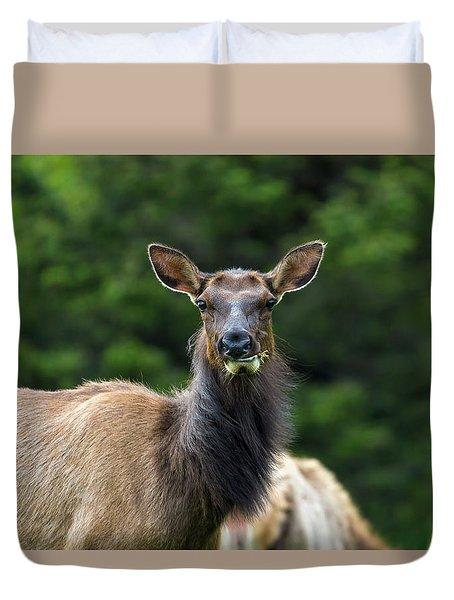Elk Staring Closeup Portrait Duvet Cover