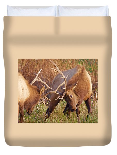 Duvet Cover featuring the photograph Elk Tussle by Todd Kreuter