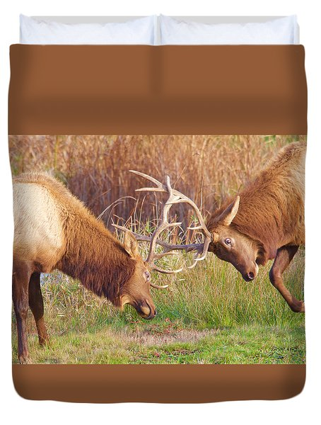 Duvet Cover featuring the photograph Elk Tussle Too by Todd Kreuter