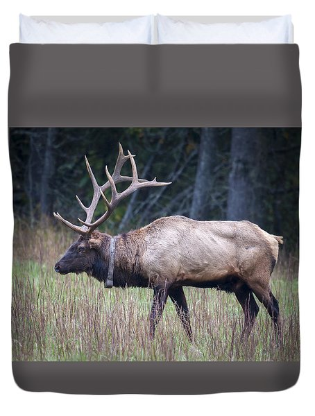 Duvet Cover featuring the photograph Elk by Tyson and Kathy Smith