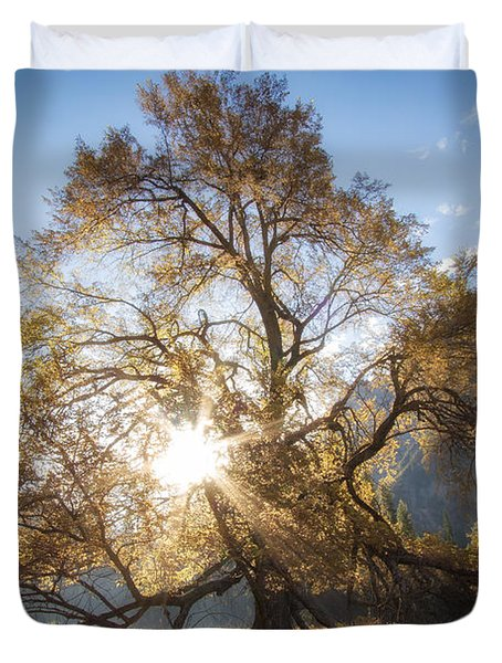 Elm Tree  Duvet Cover