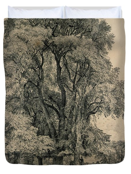 Elm Trees In Old Hall Park Duvet Cover by John Constable
