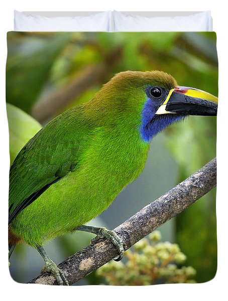 Emerald Toucanet Duvet Cover