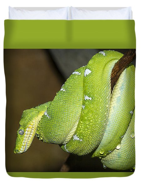 Emerald Tree Boa Duvet Cover