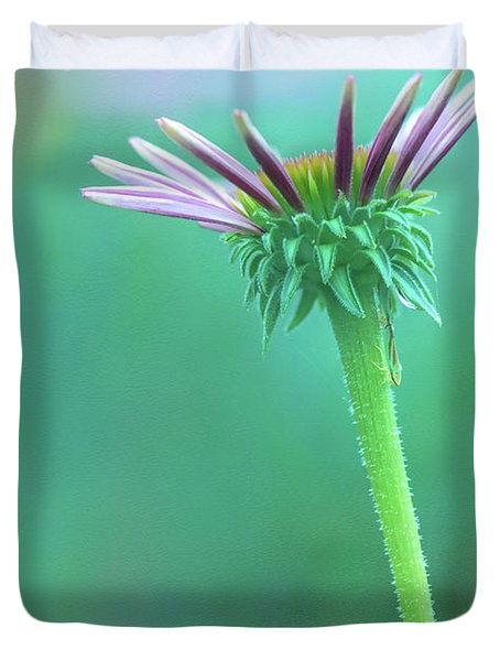 Emerging Purple Conefower Reaching For The Sky Duvet Cover