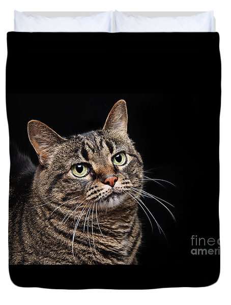 Emmy The Cat Ponder Duvet Cover
