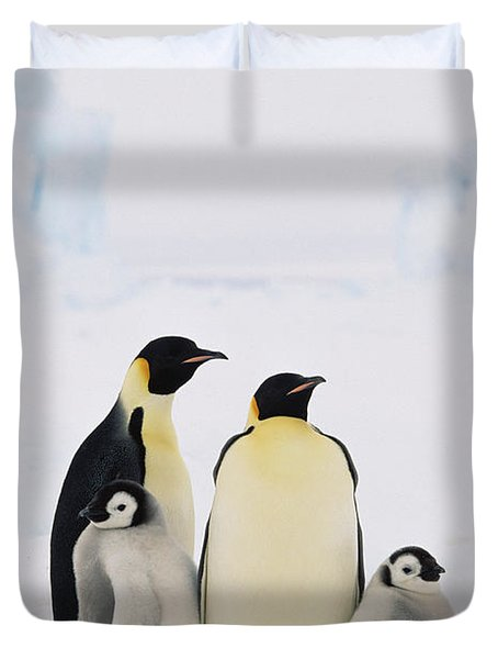 Emperor Penguin Aptenodytes Forsteri Duvet Cover by Konrad Wothe