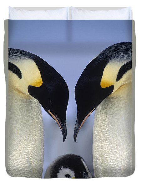Duvet Cover featuring the photograph Emperor Penguin Family by Tui De Roy