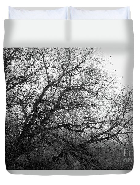 Duvet Cover featuring the photograph Enchanted Forest by Ana V Ramirez