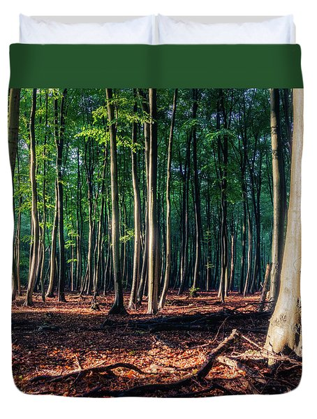 Duvet Cover featuring the photograph Enchanted Forest by Dmytro Korol