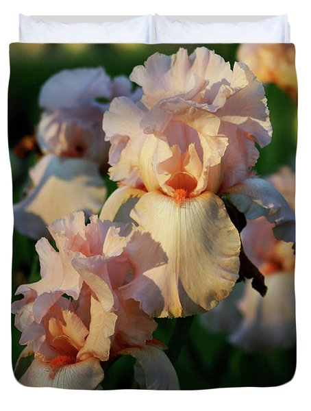 End Of Day Pink Irises 6702 H_2 Duvet Cover