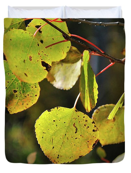 Duvet Cover featuring the photograph End Of Summer by Ron Cline