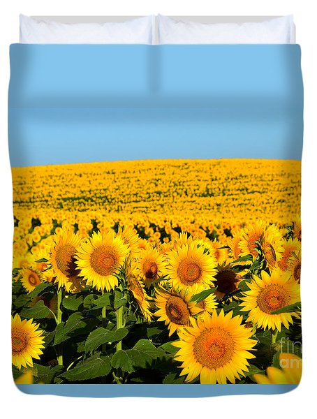 Endless Sunflowers Duvet Cover by Catherine Sherman