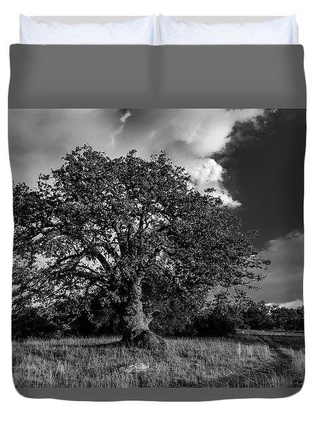 Engellman Oak Palomar Black And White Duvet Cover