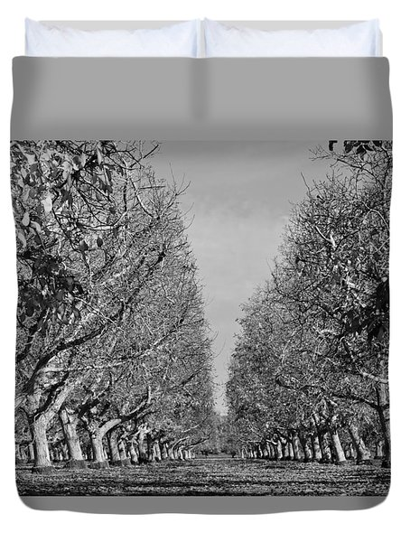 English Walnut Orchard  Duvet Cover by Pamela Patch