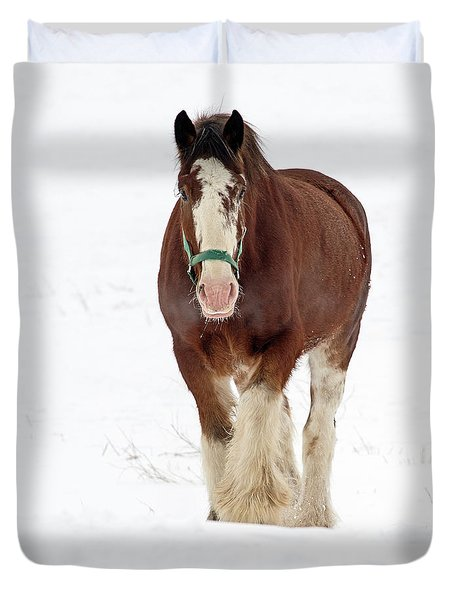 Duvet Cover featuring the photograph Equus Caballus.. by Nina Stavlund