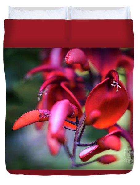 Duvet Cover featuring the photograph Erythrina Crista Galli Flower Spain Square Cadiz Spain by Pablo Avanzini